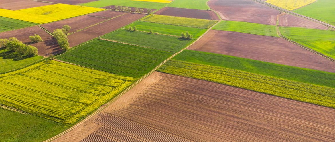 Colorful agriculture farmland at spring, aerial drone view